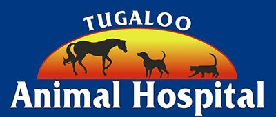 Tugaloo Animal Hospital